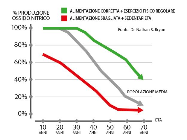 A partire dai 20 anni, perdiamo progressivamente la capacità di produrre Ossido Nitrico (circa il 10% ogni 10 anni).
