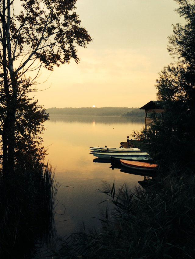 canottaggio-sul-fiume-po-a-torino.jpg