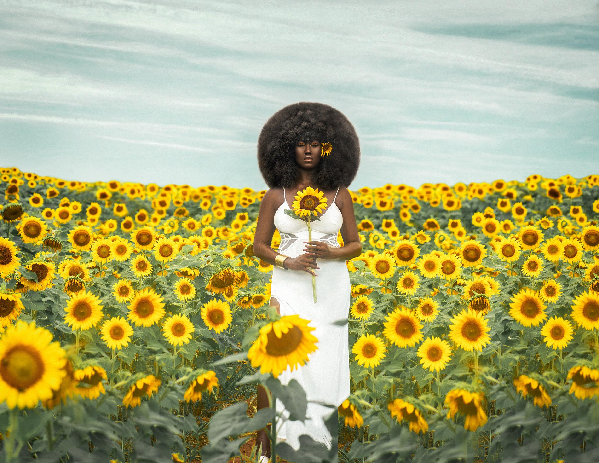 symonesunflower.jpg