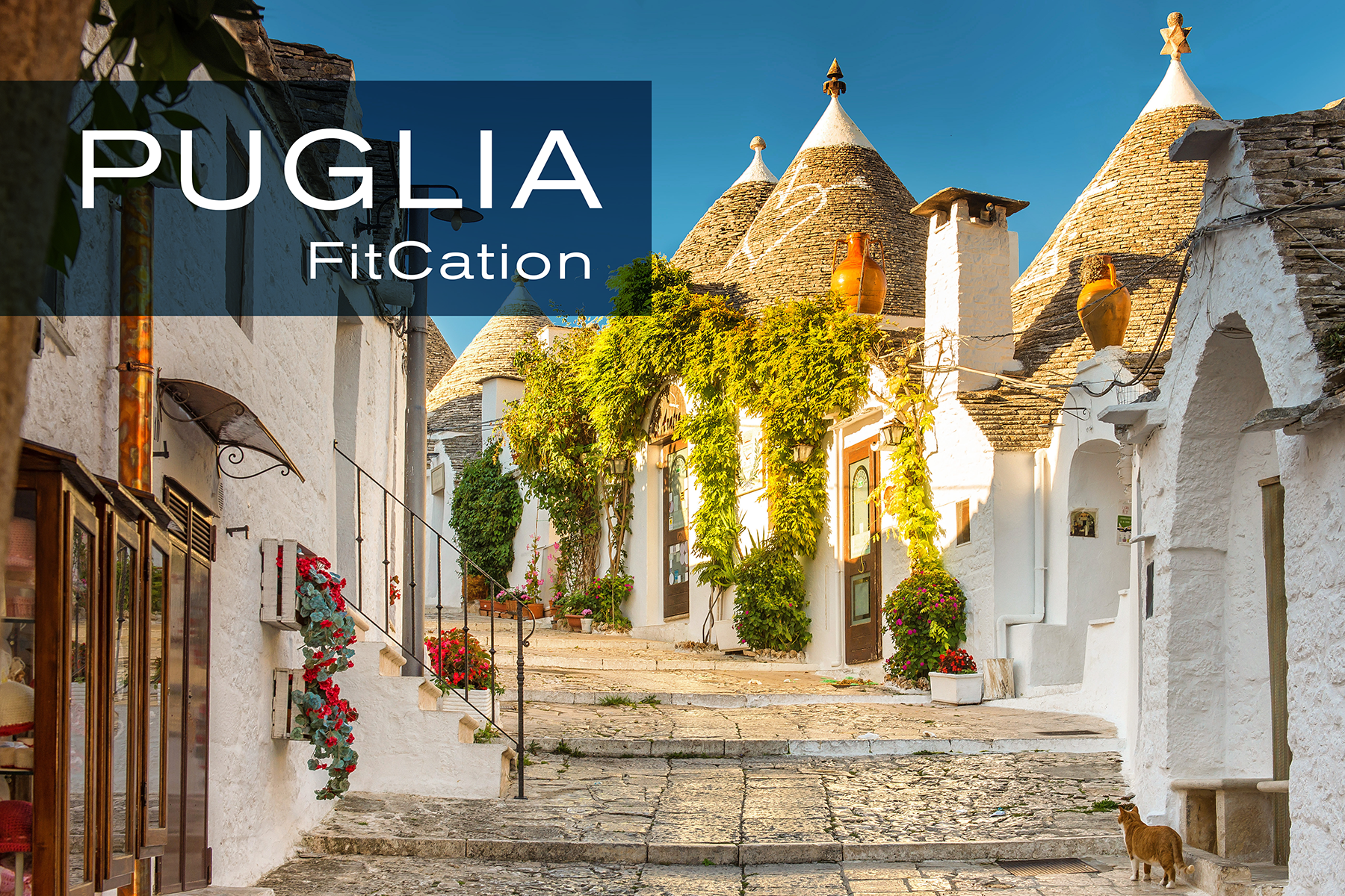 TBA_Fitcations_Puglia.png