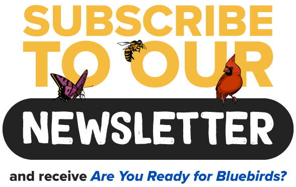 Subscribe-to-our-Newsletter-graphic.png