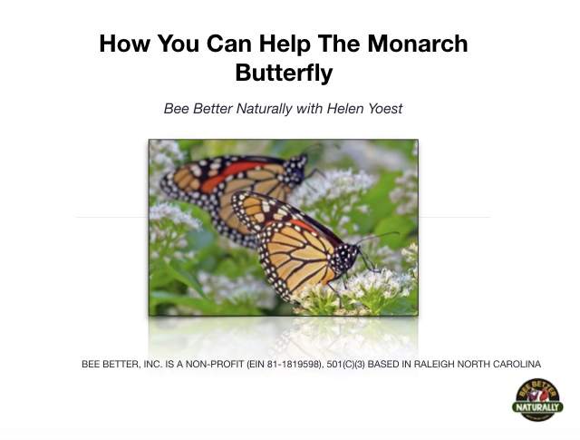 How+YOU+can+raise+Monarch+Butterflies.jpg