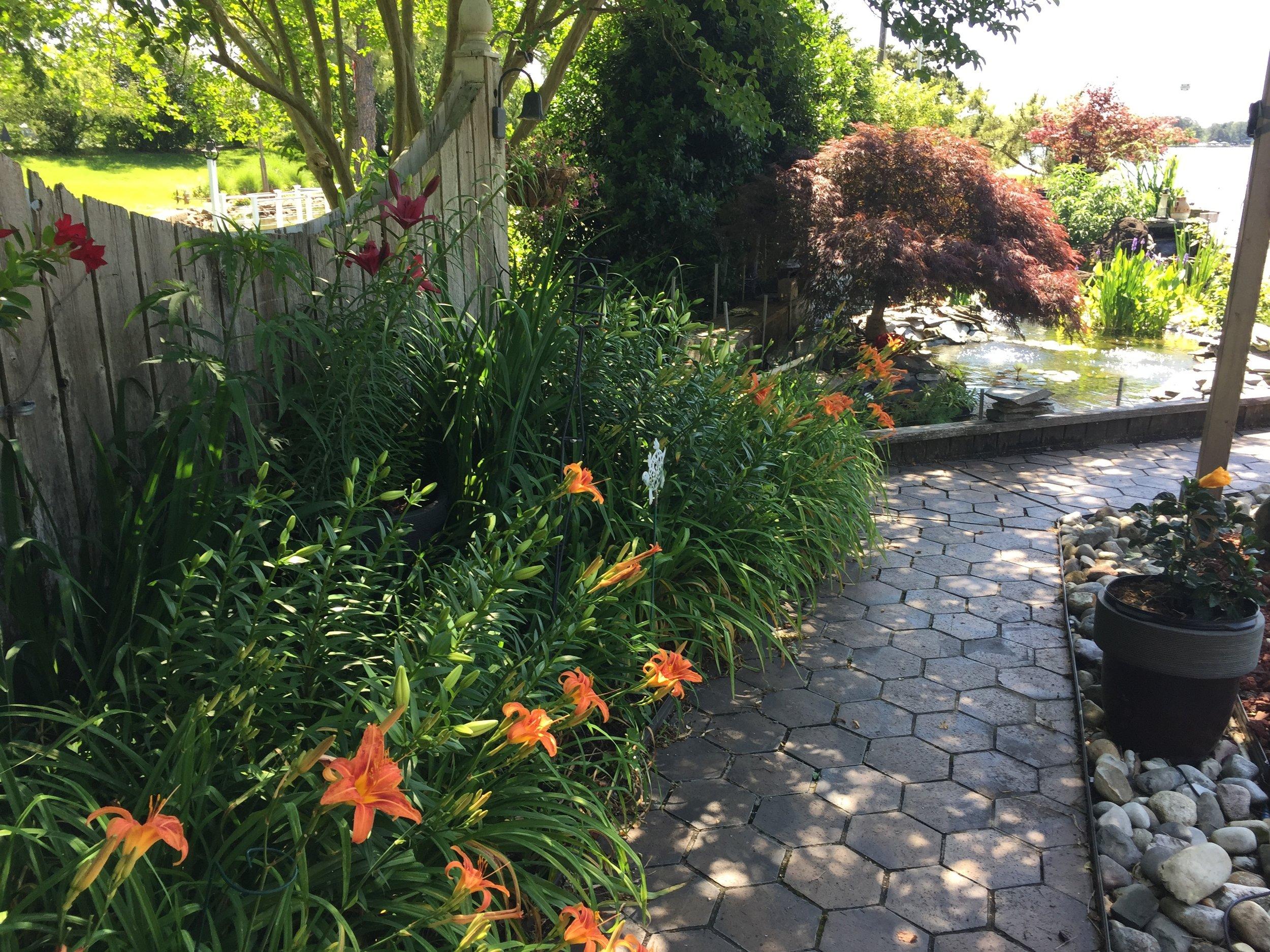 Kirsch Garden