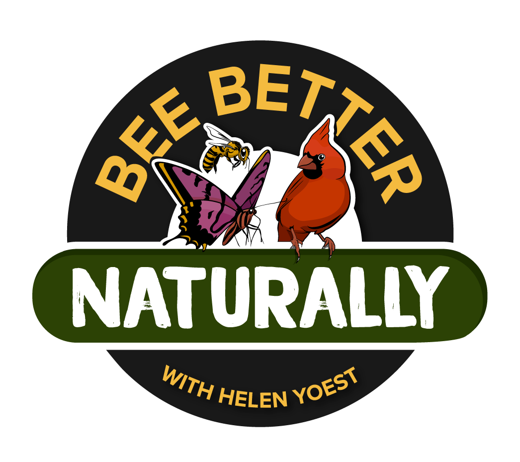 Bee-Better-Logo-Transparent-Background.png