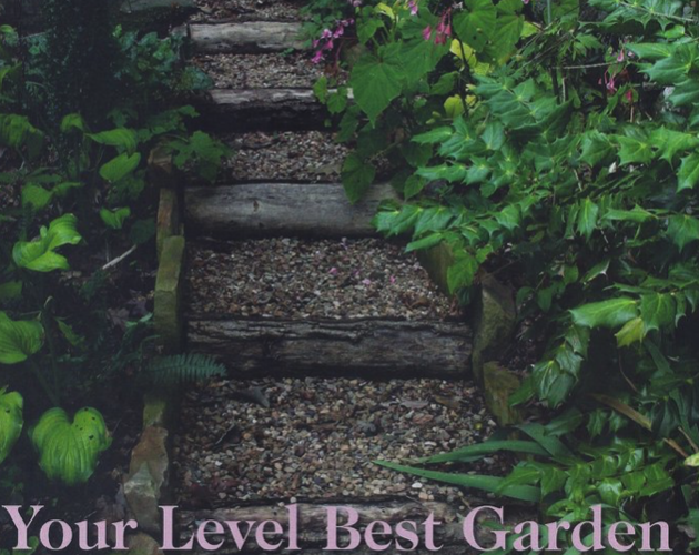 Bee Better Naturally How-To Find Your Level Best