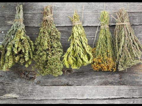 Drying+herbs.jpeg