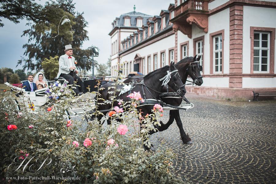 Hochzeitsfotos Schloss Philippsruhe-148.jpg