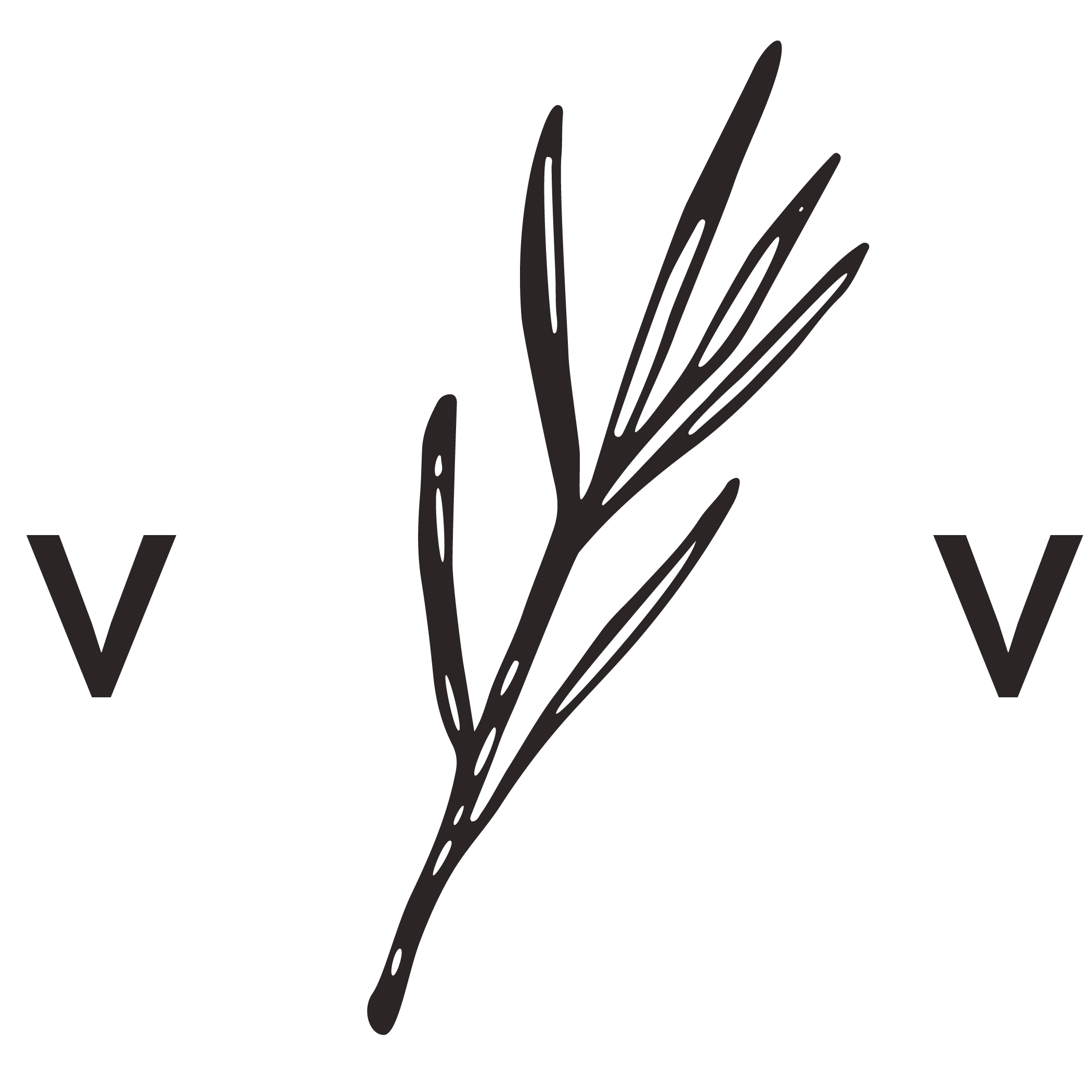 Vow + Vast FOOTER LOGO.png