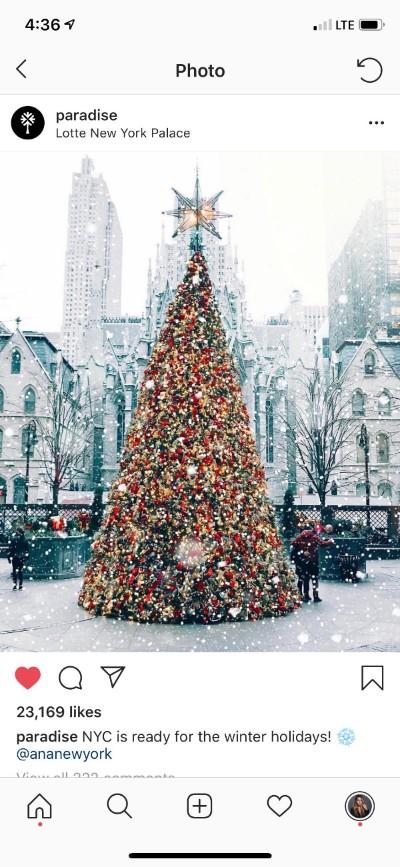 vowandvast_Lotte_NY_Palace_paradise_instagram.jpeg