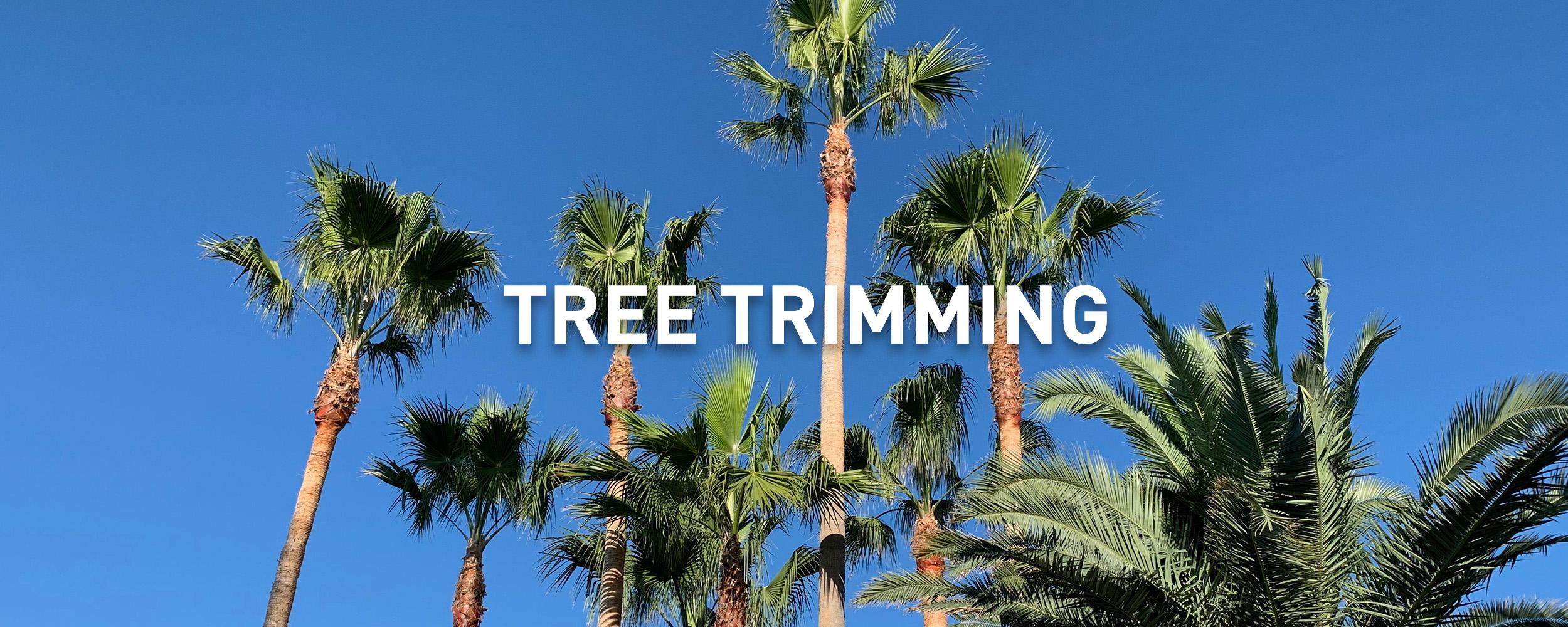 TREETRIMMING_2500.jpg