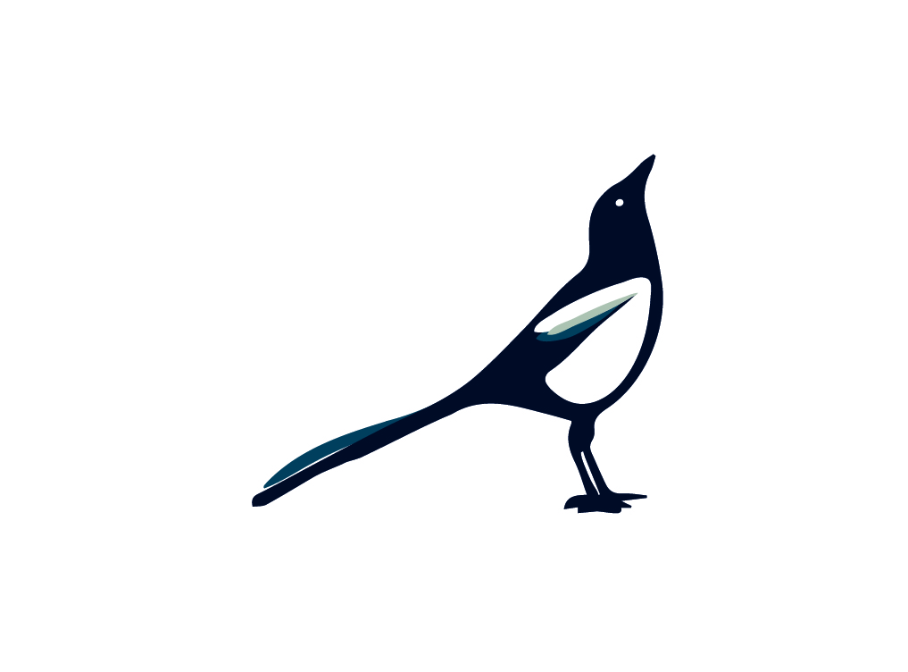 Full Magpie white background.jpg