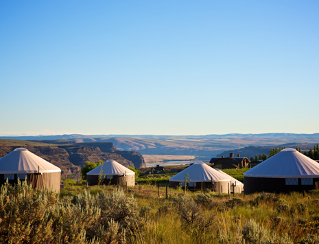 yurts3 (1).jpg