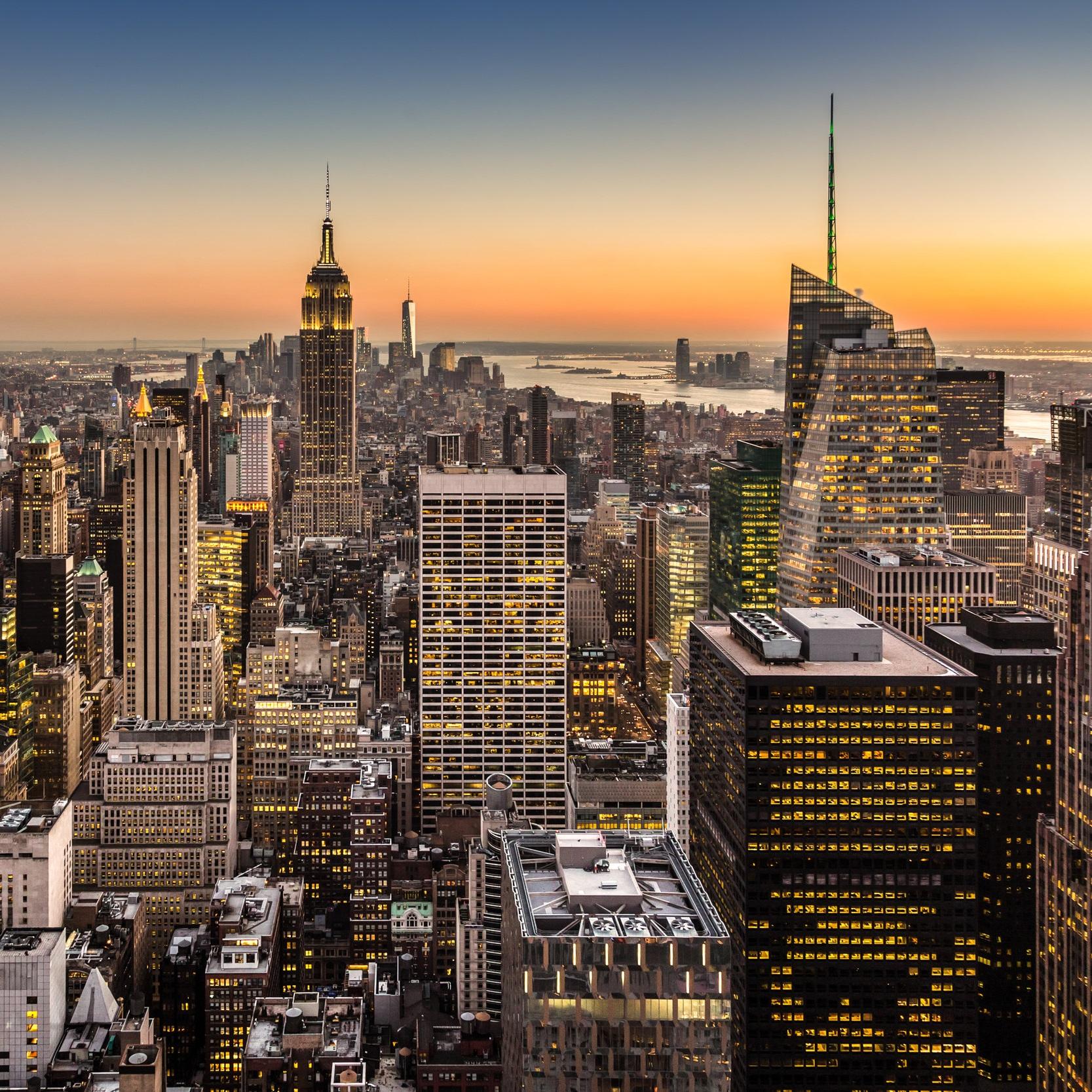 Manhattan - Laser Fox