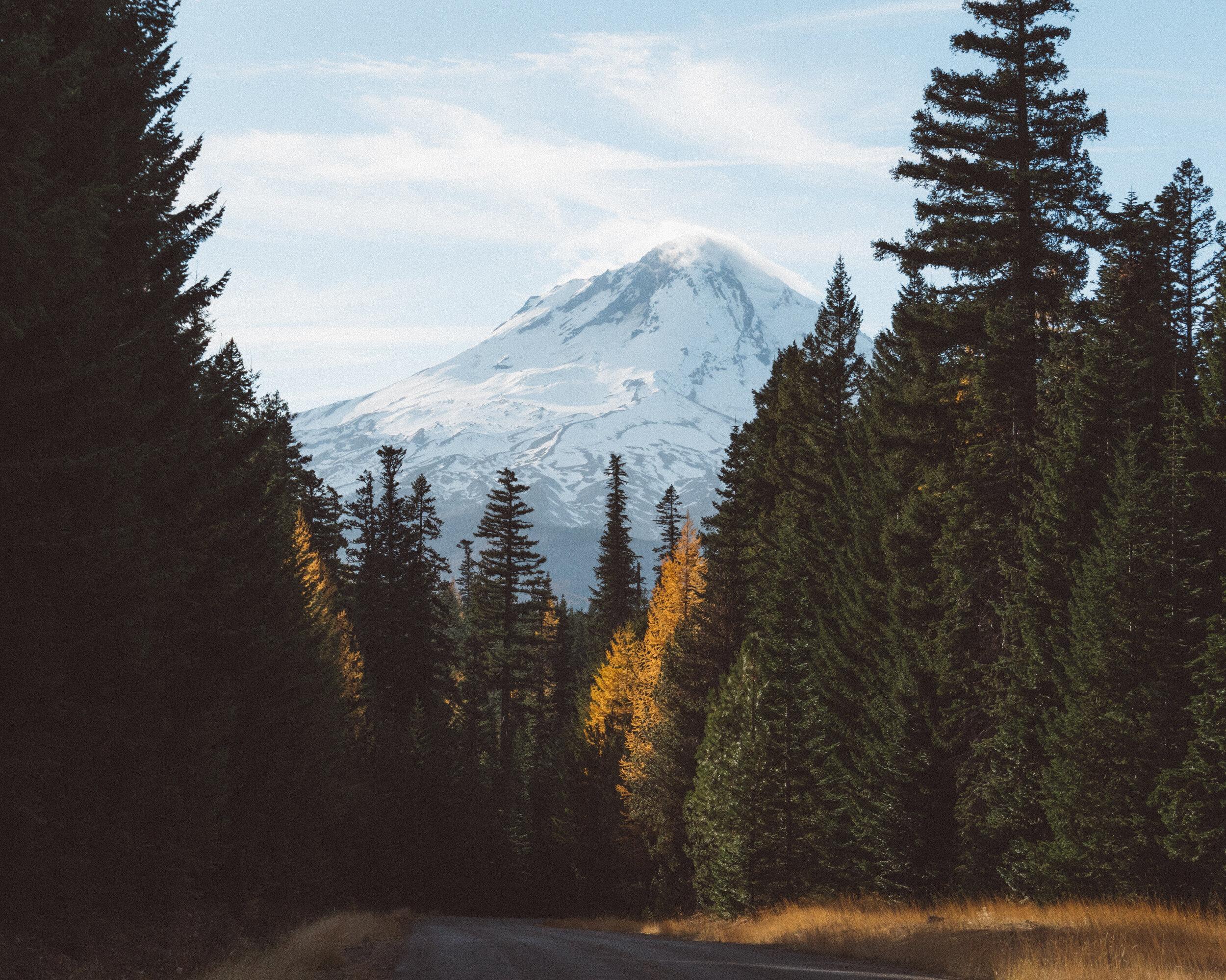 Pacific Northwest Seminars - Will Vision & Laser Centers