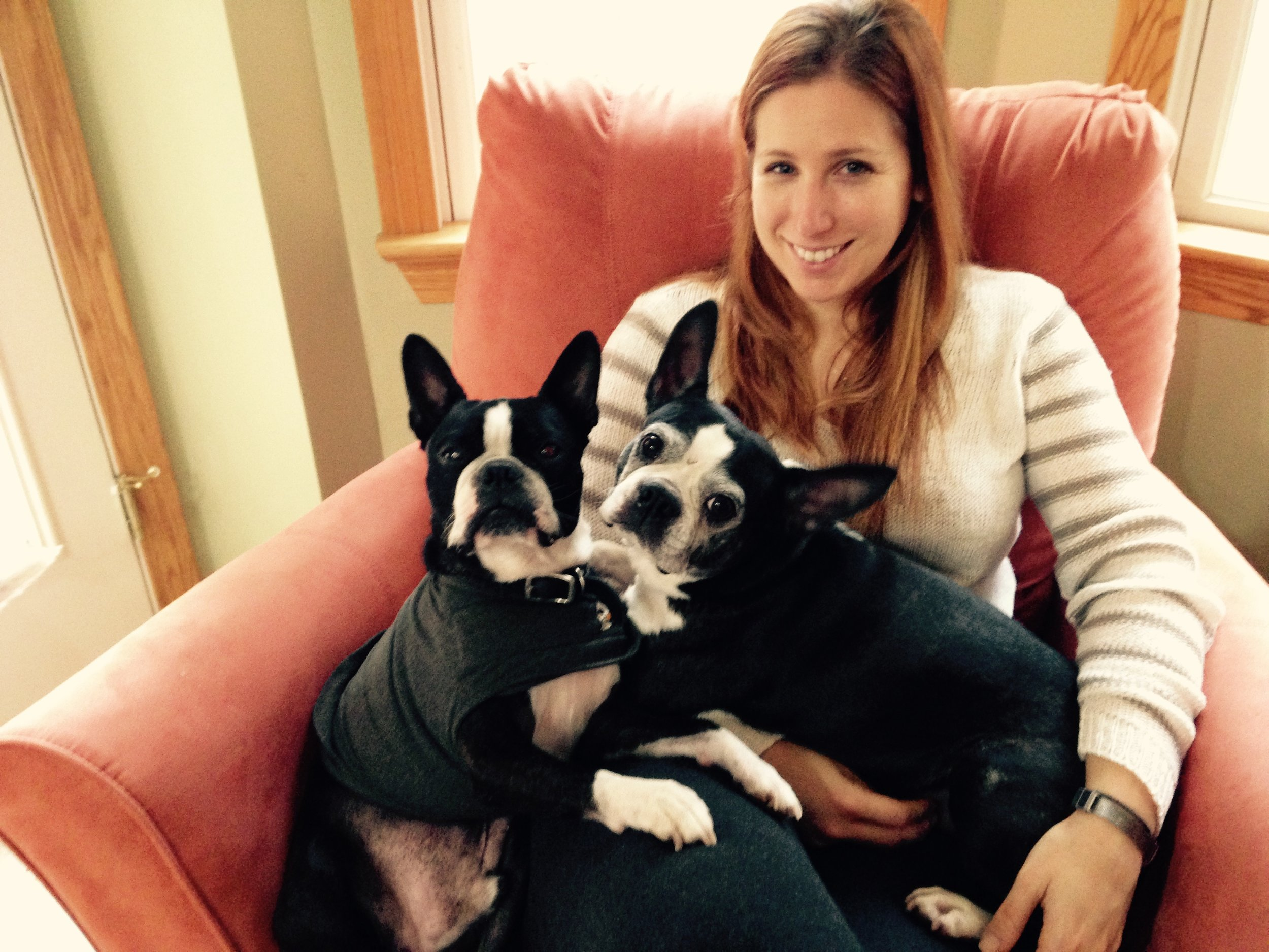 Lisa_with_Boston_Terriers