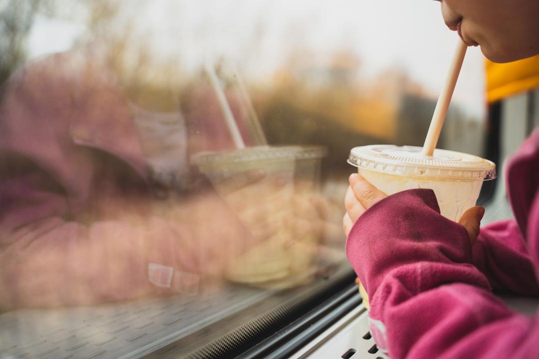 ombord tåg fönster hornborgarsjön