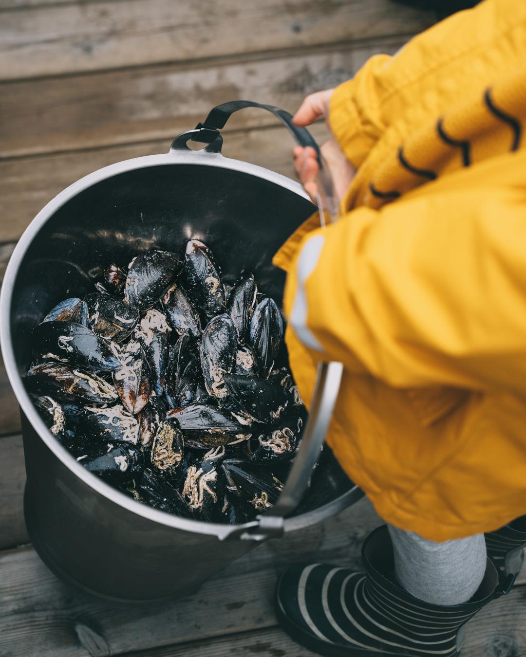 musslor i hink