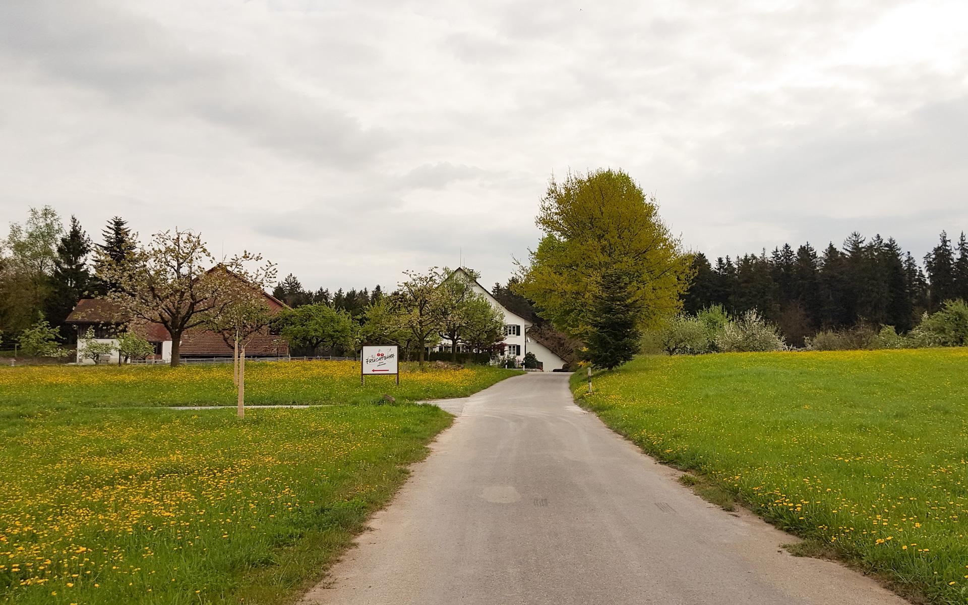 20170415_WegHeggenhof.jpg