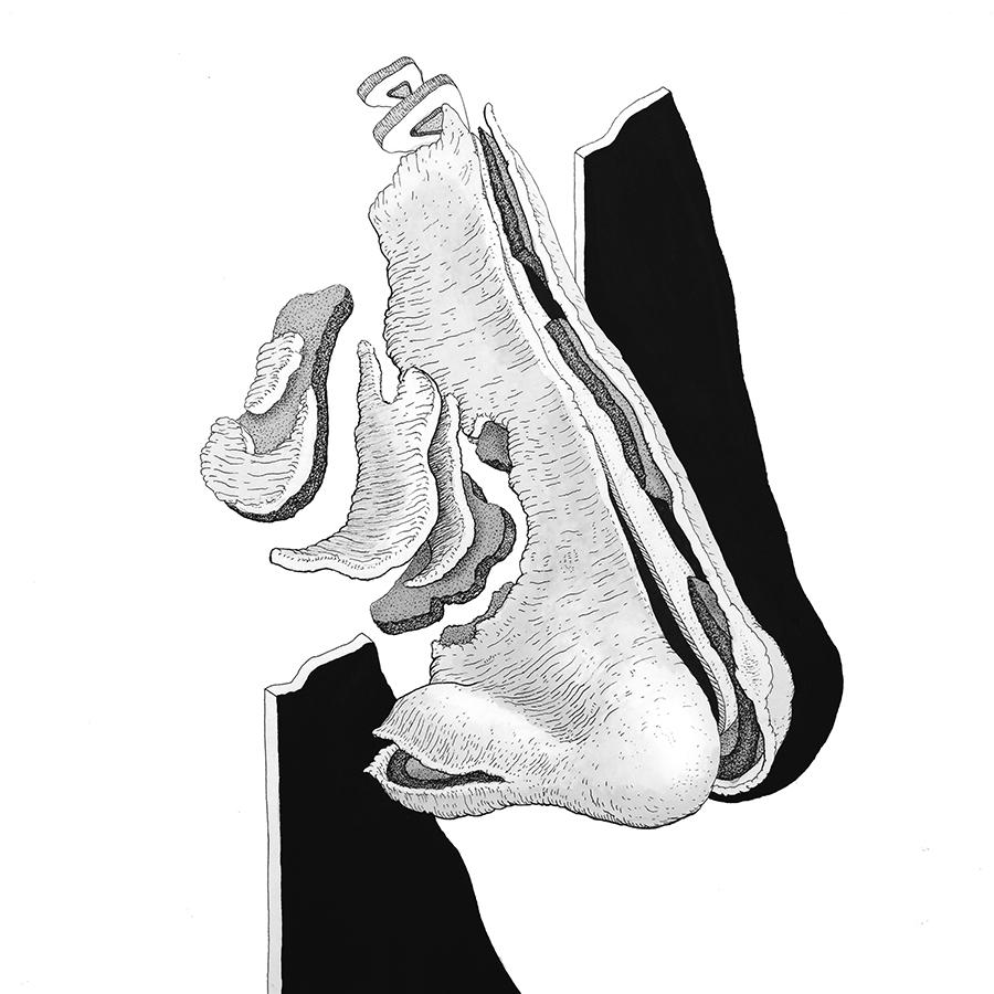 ART COVER - María _ San José - Niño Árbol [Ssensorial] WEB.jpg