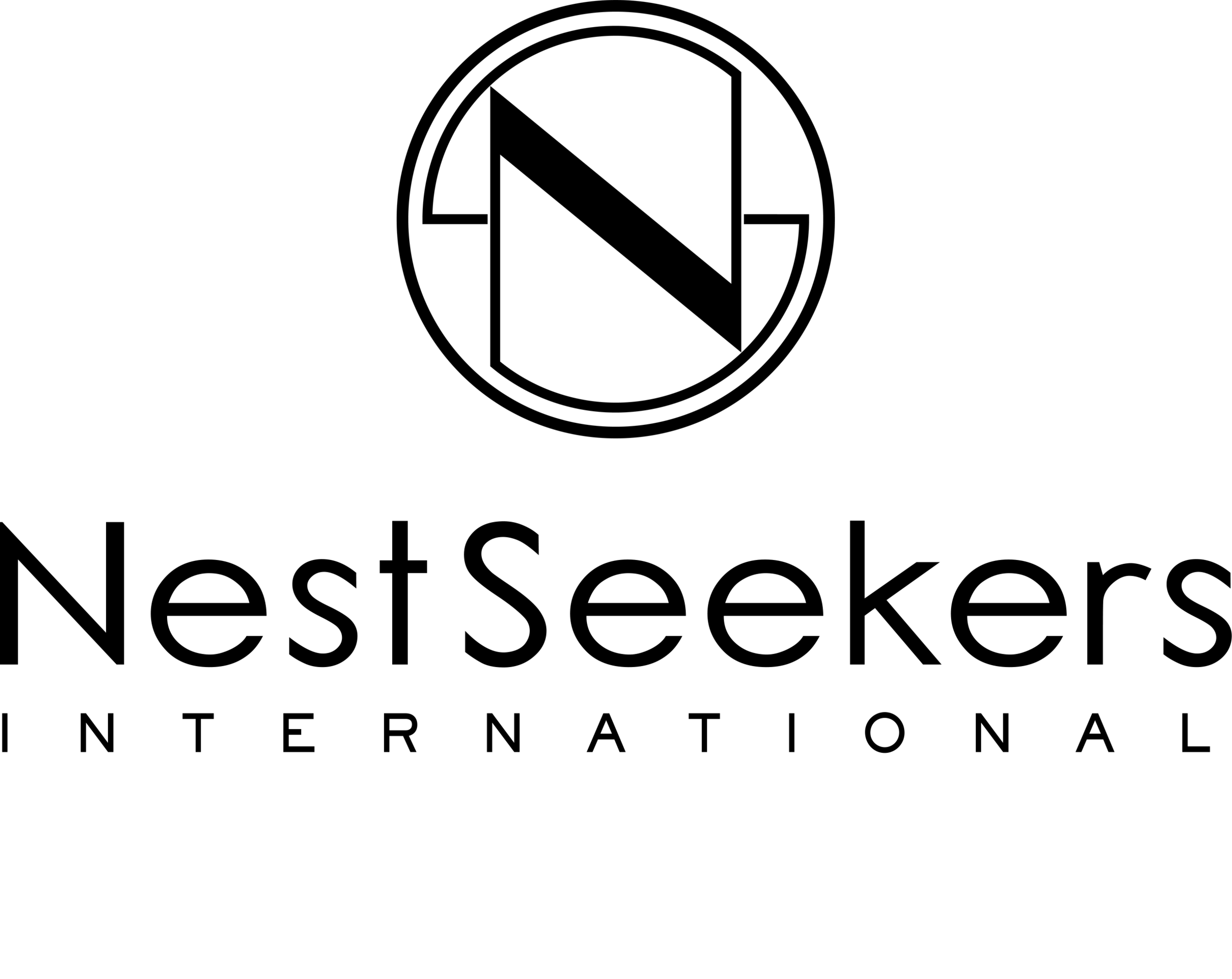 NS icon logo temp.png