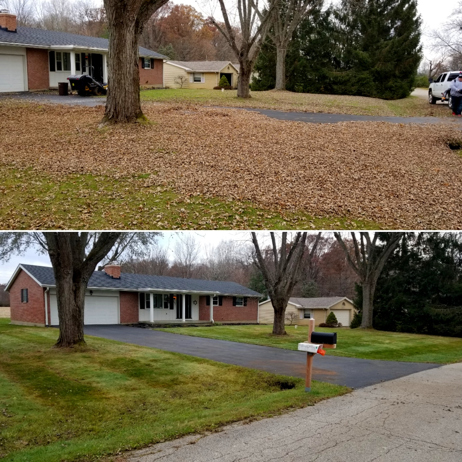 A fall clean-up including leaf removal and flower bed clean-out