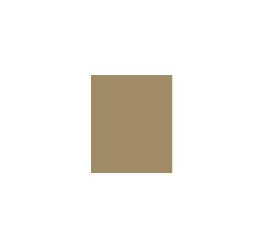 WALDORF_ASTORIA-01.png
