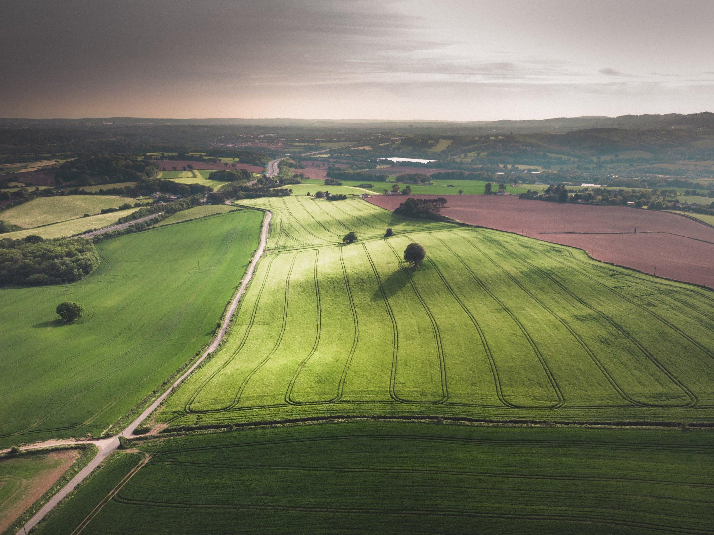 Land/Acreage -