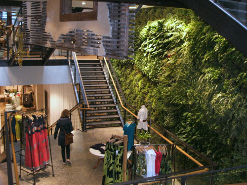 500-green-wall.jpg