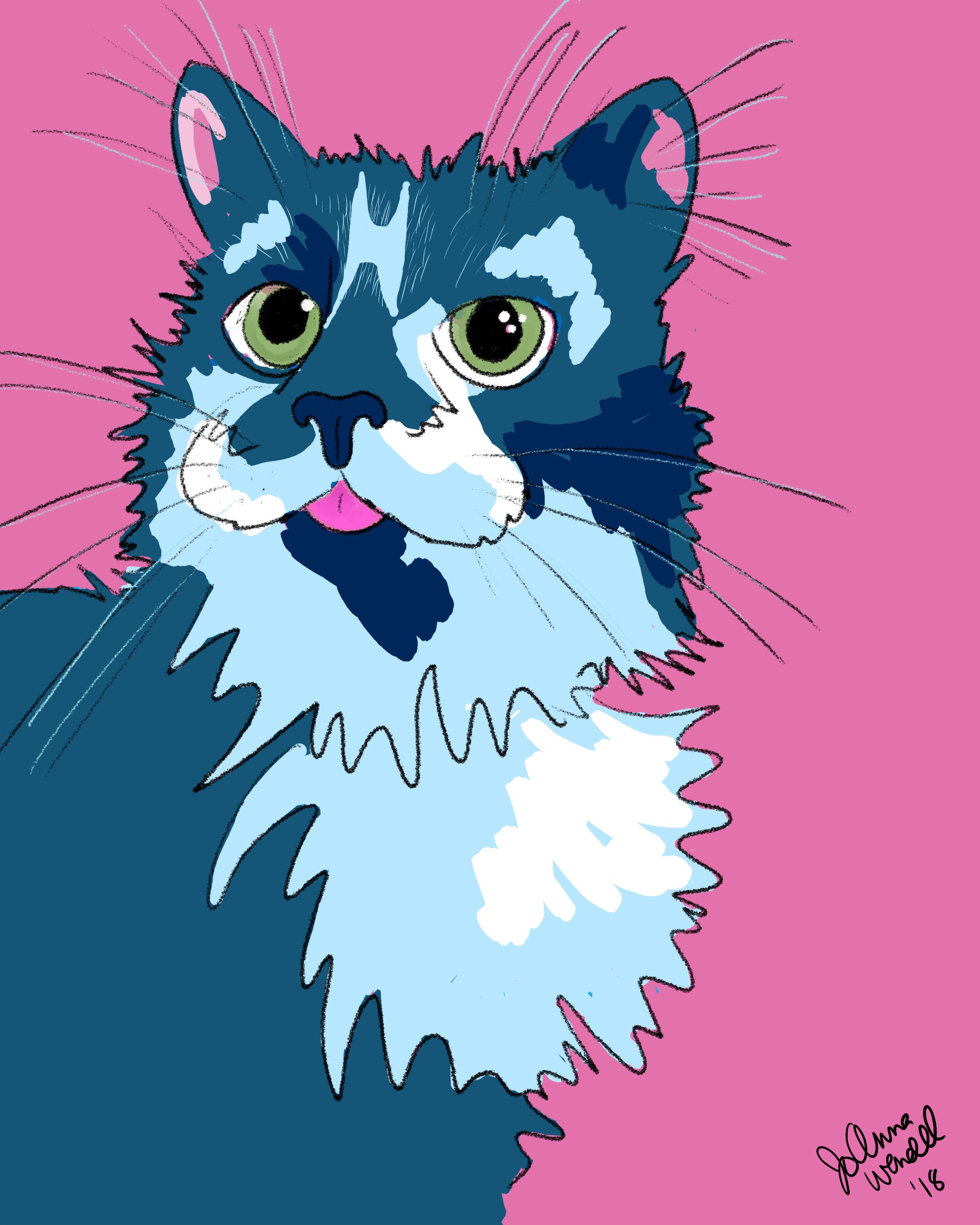 colleen cat.jpg