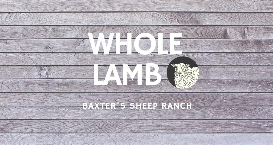 whole sheep.wood.jpg