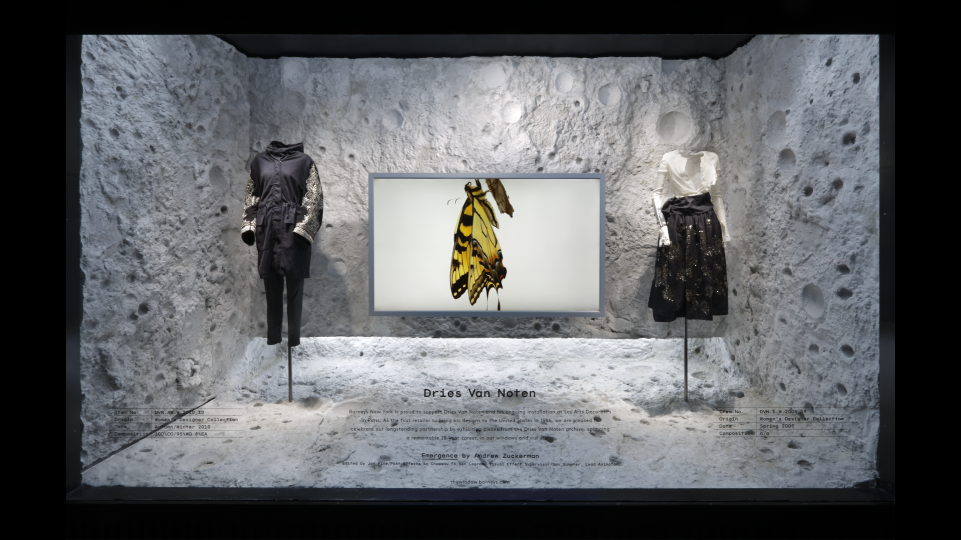 Emergence - Window Display