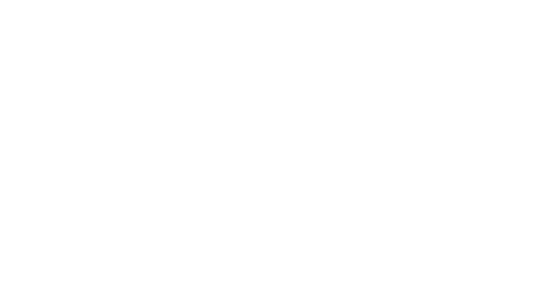 cinequest selection trans.png