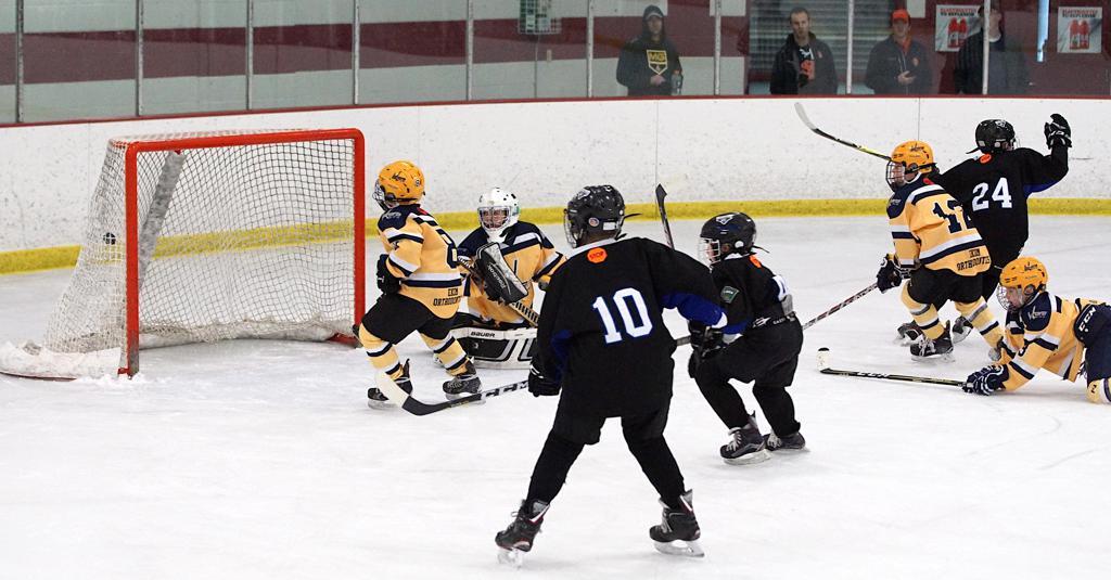 Rogers Youth Hockey