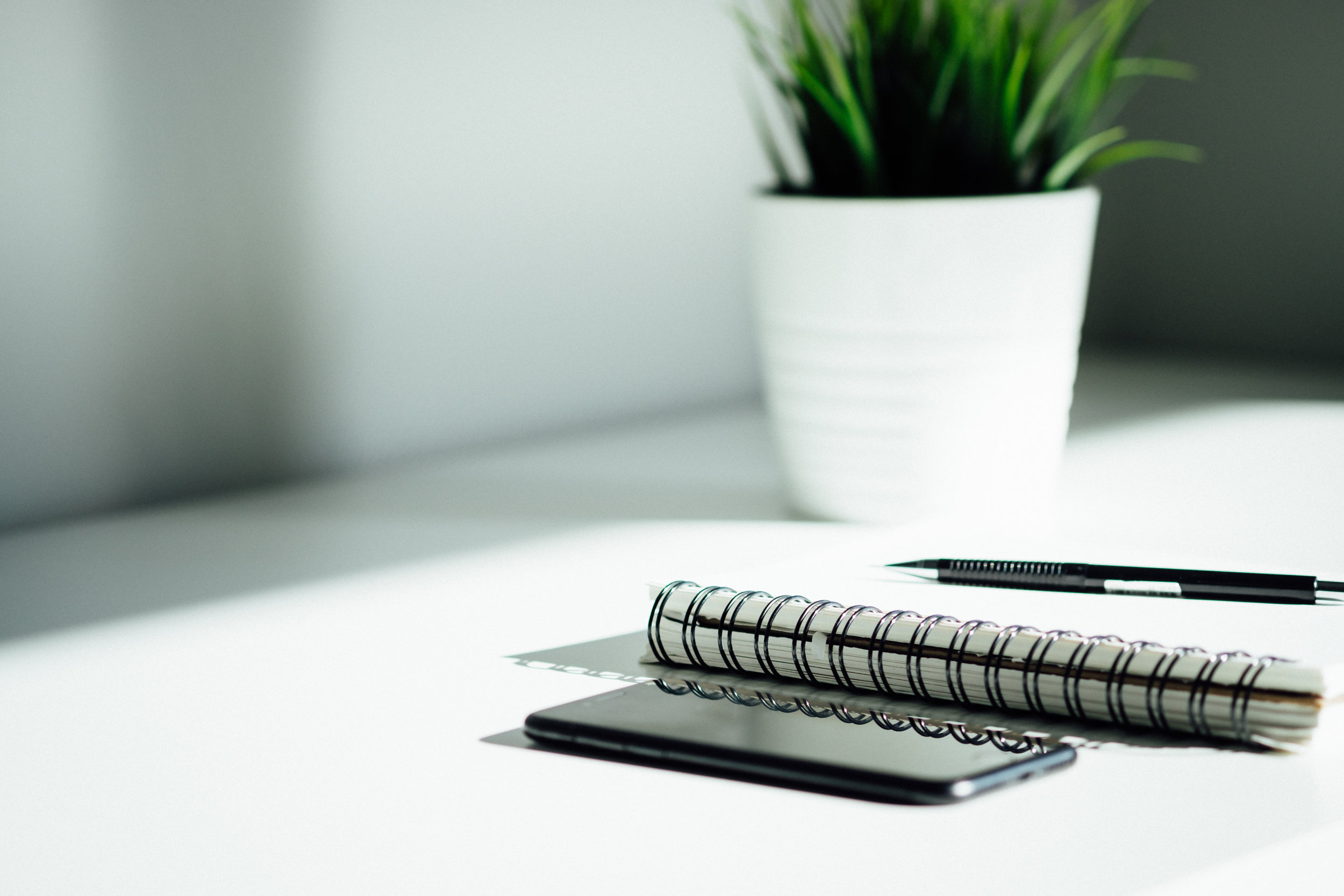 Picture of notebook, phone, pen, and plant.