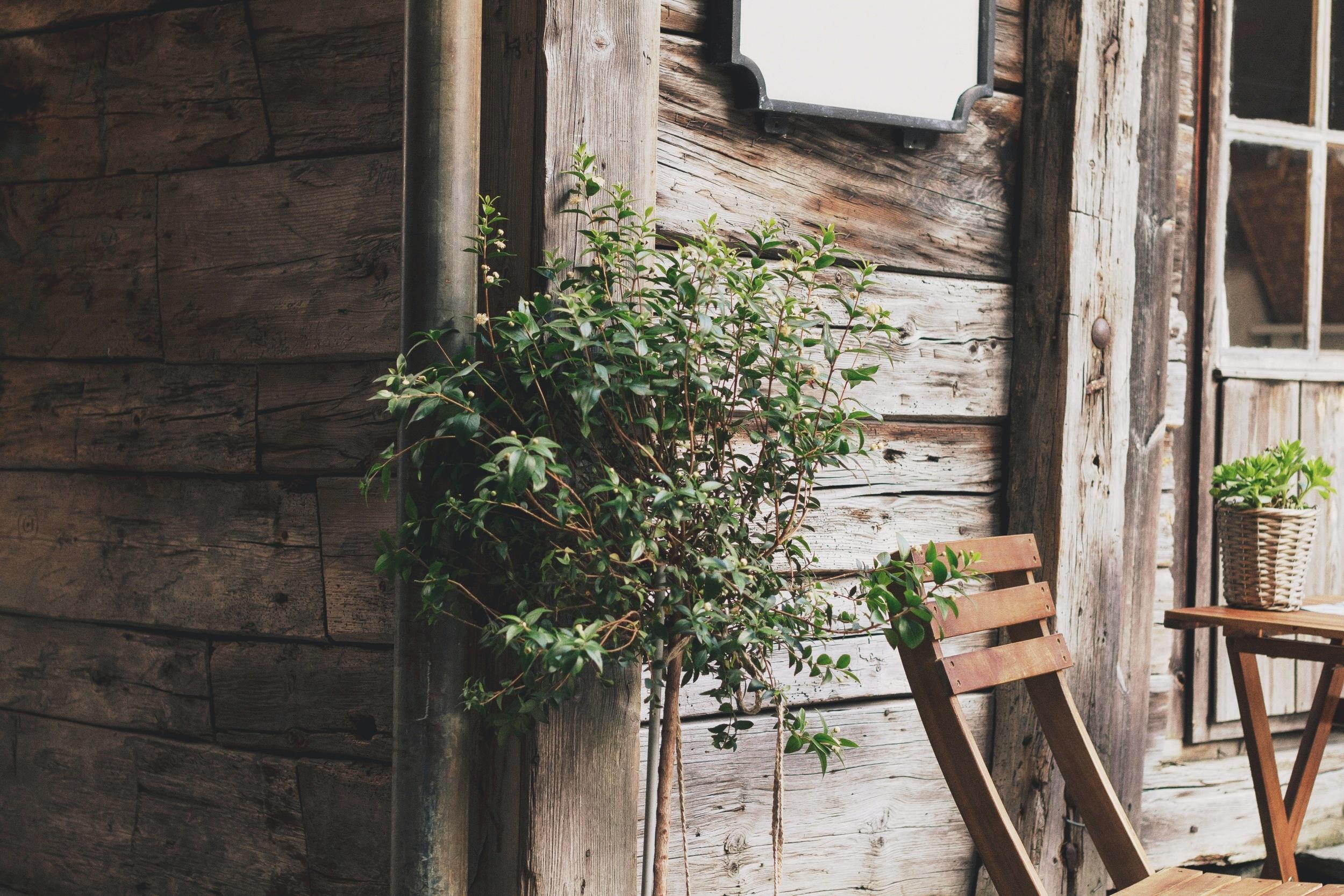 Venturi_Schulze_Vineyards_Farmhouse.jpg