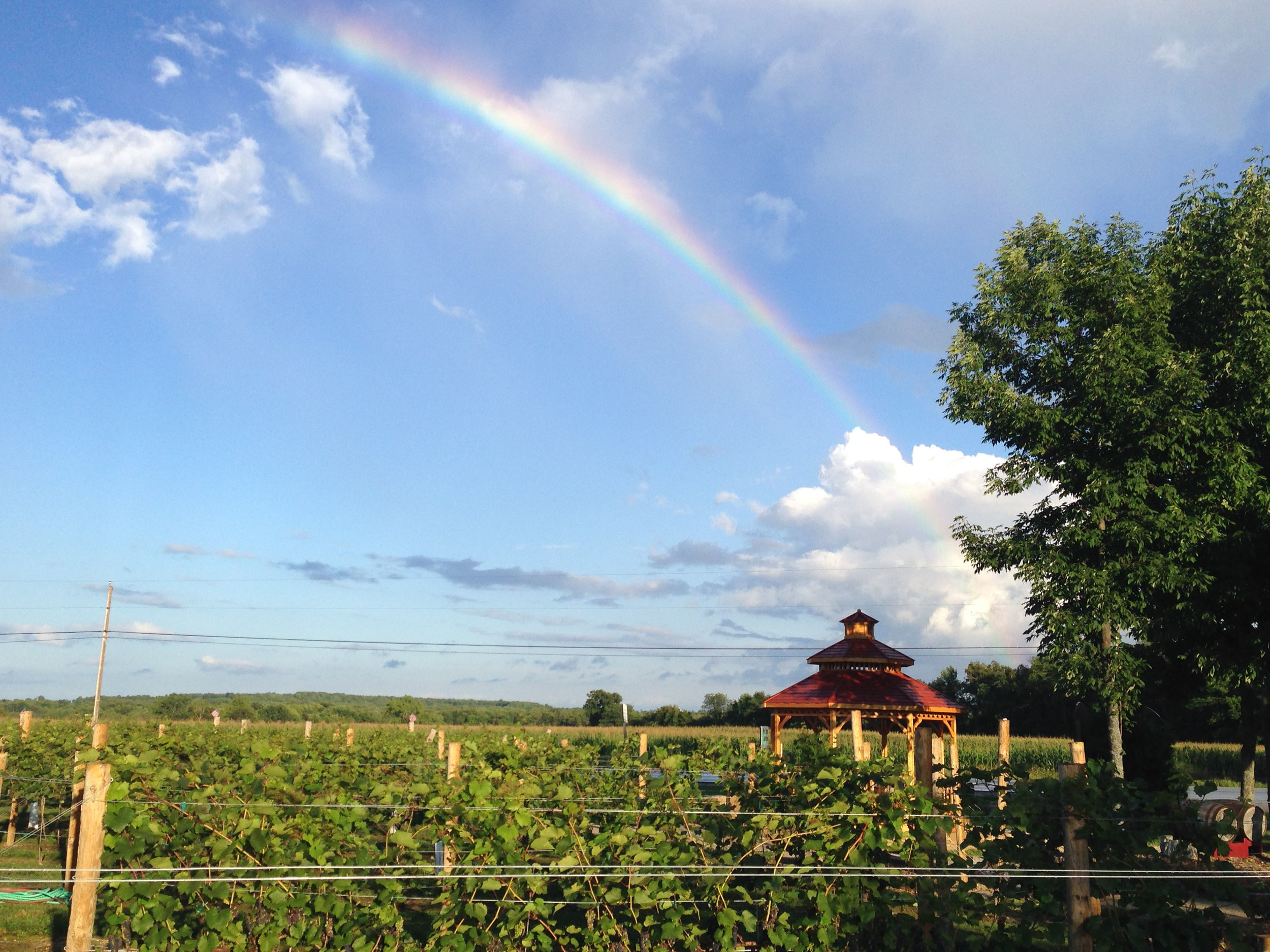 Harbor Ridge sees lots of rainbows during the summer. There's a reason it's called Rainbow Ridge!