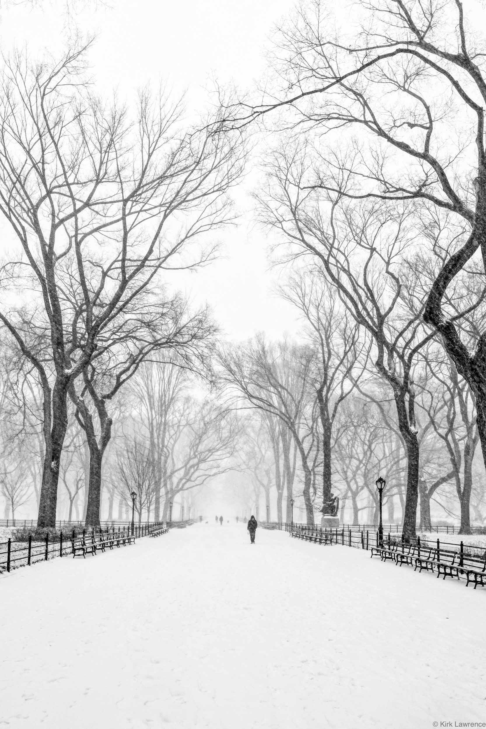 Central_Park_New_York_City_snow_storm.jpg