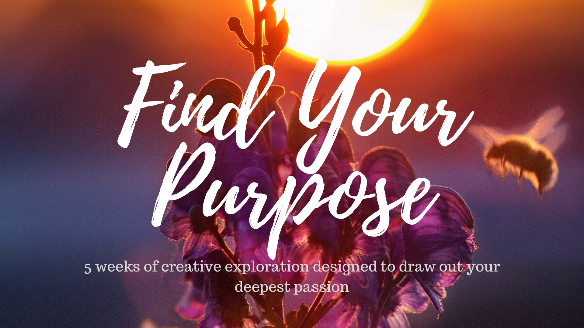find_your_purpose