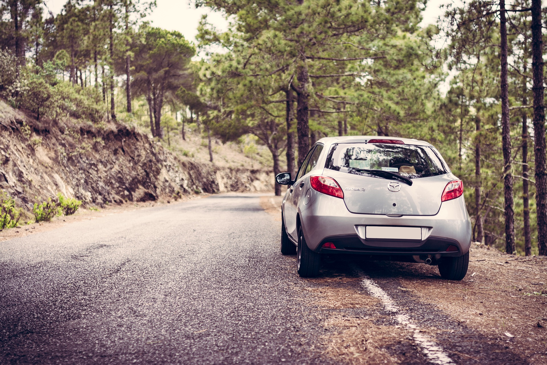Pre- Driving Assessments -