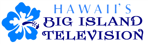 BITV-mobile-logo.png