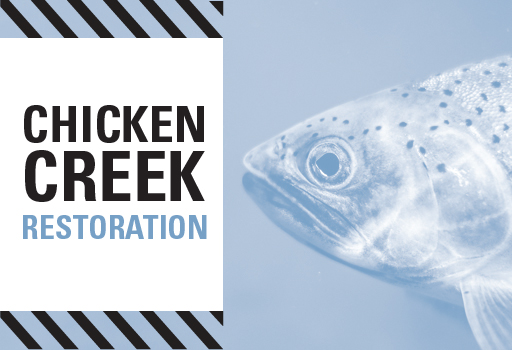 Chicken Creek Web Banner.jpg