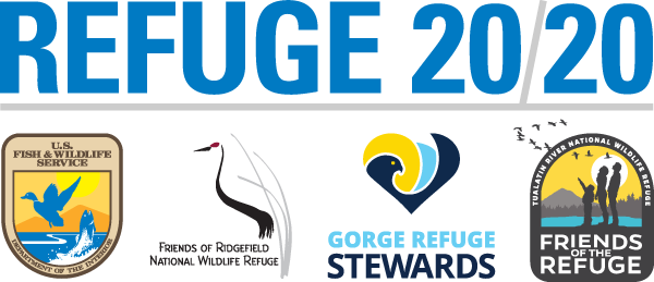 Refuge2020Graphic.png