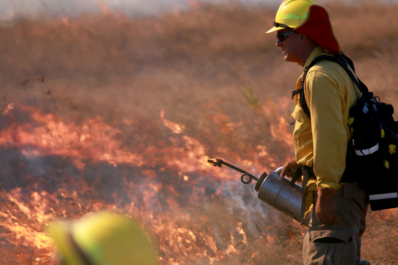 In September 2018, Ridgefield NWR re-introduced prescribed fire as a management tool of the land.