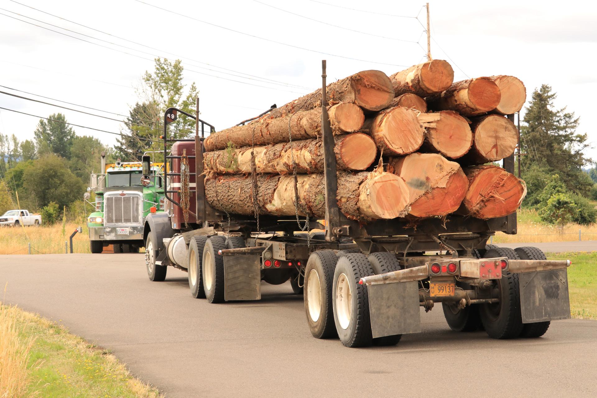 Log-Delivery-1.jpg
