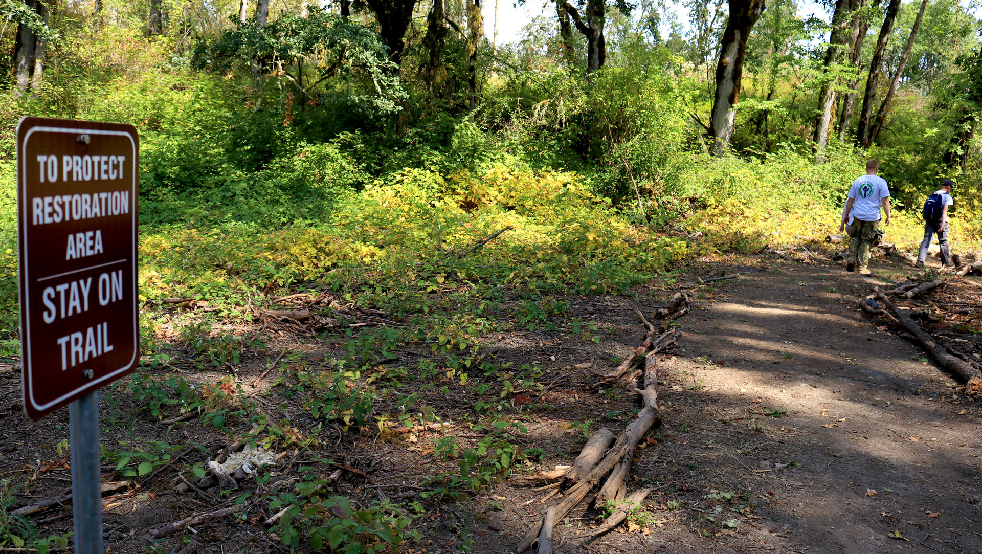 The process of restoring the oak woodland habitat at Ridgefield NWR's Carty Unit has just begun, thanks to the efforts of our many partners, including our dedicated YCC crew.