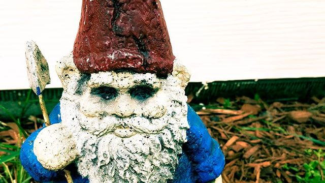 We're thankful we've reached 100+followers. I guess we don't have to release the evil gnomes yet.