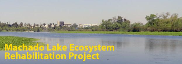 Machado Lake Ecosystem Rehab Project.png