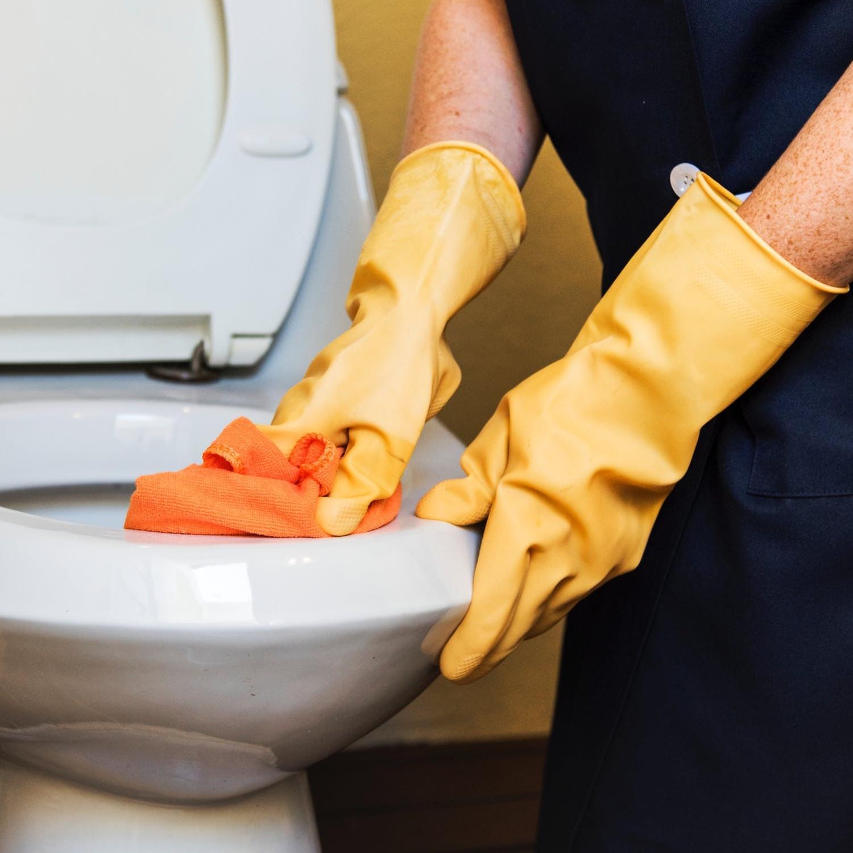 toiletclean.jpg