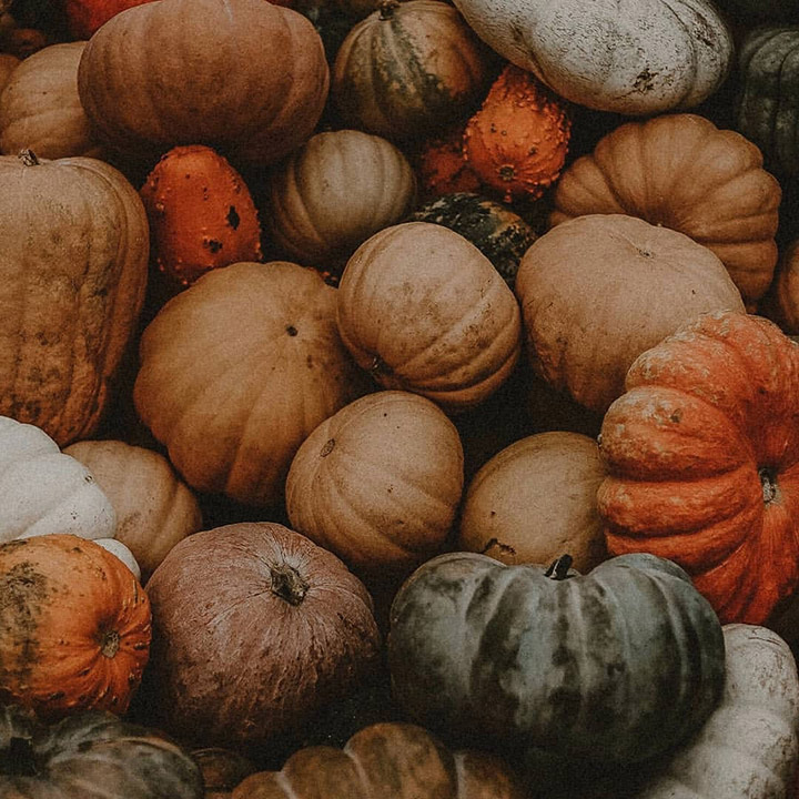 Did you know that plastic makes up 90% of the materials used in the millions of Halloween costumes sold each year? Photo taken by Unsplash.