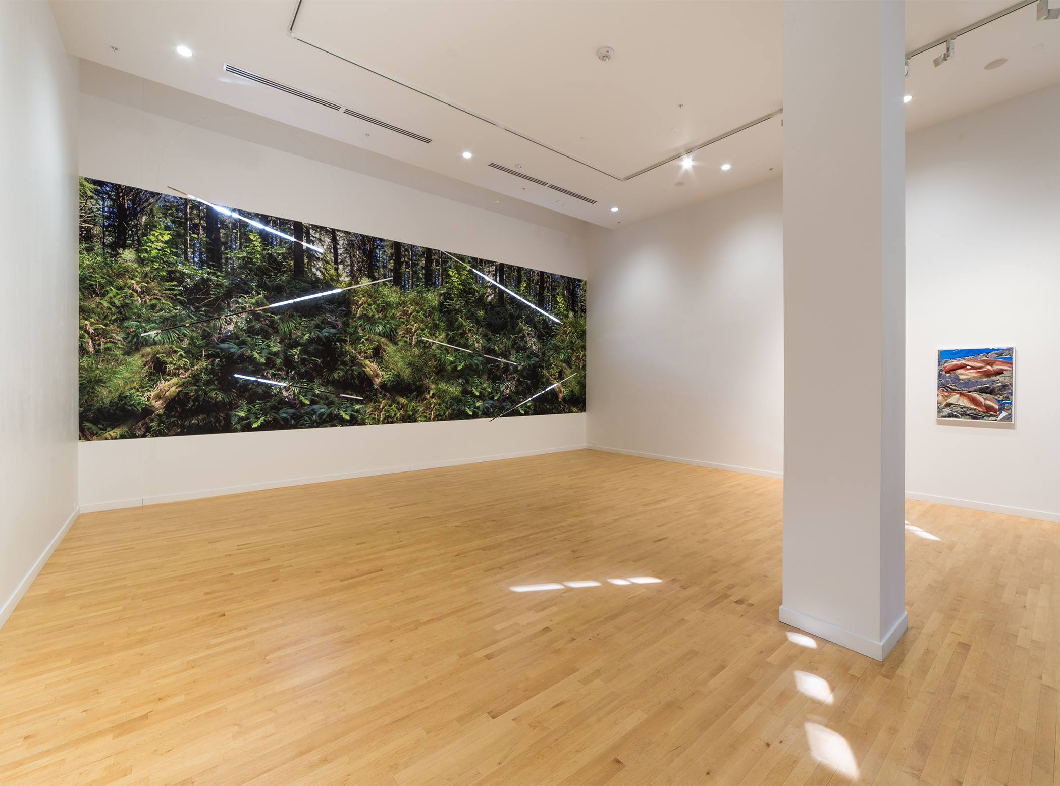 Cape Disappointment Shadows and Sunlight, 2017 10 x 32 feet site-specific installation: archival inkjet prints, cuts in wall. Installation at Center for Contemporary Art and Culture at the Portland Northwest College of the Arts, Portland, Oregon.